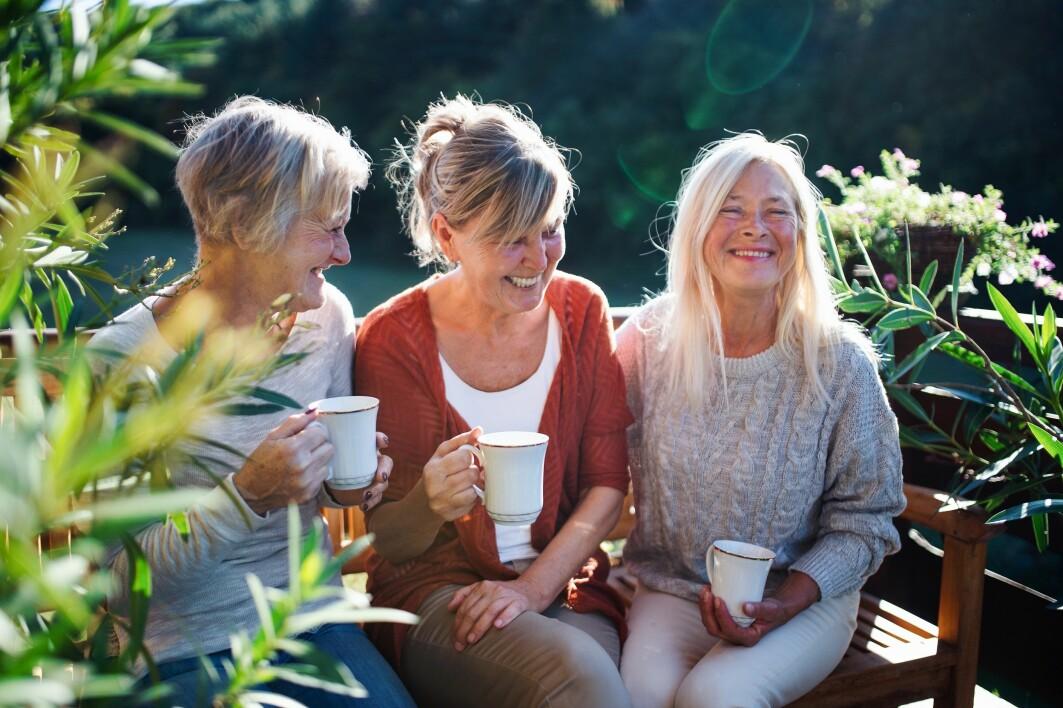 I små kommuner der alle kjenner alle, finnes det mange muligheter og mange felles arenaer å møtes på, viser studien om aldring på bygda.