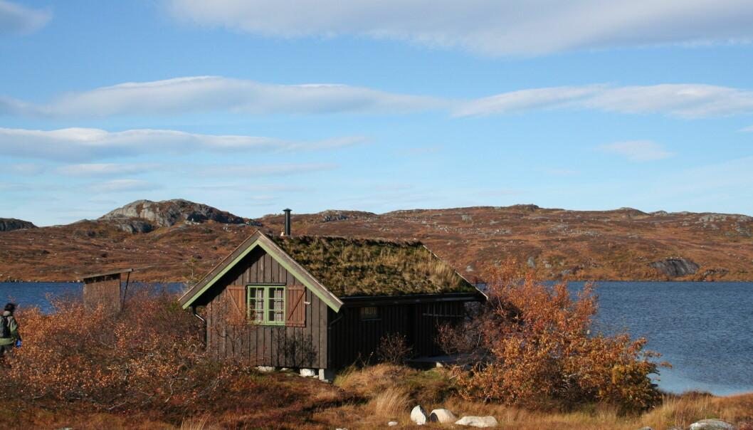 Bolig: I hus og hytte