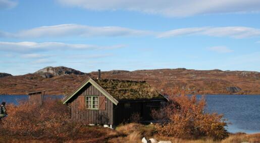Bakgrunn: Bolig: I hus og hytte