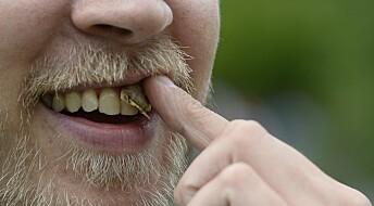 Røykere velger oftere snus med smak, viser studie