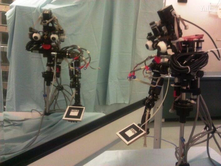 Roboten NICO bruker mye tid på å speile seg, men det er ikke fordi han er en jålebukk - ihvertfall ikke så vidt forskerne vet. (Foto: Justin Hart/ Yale University)