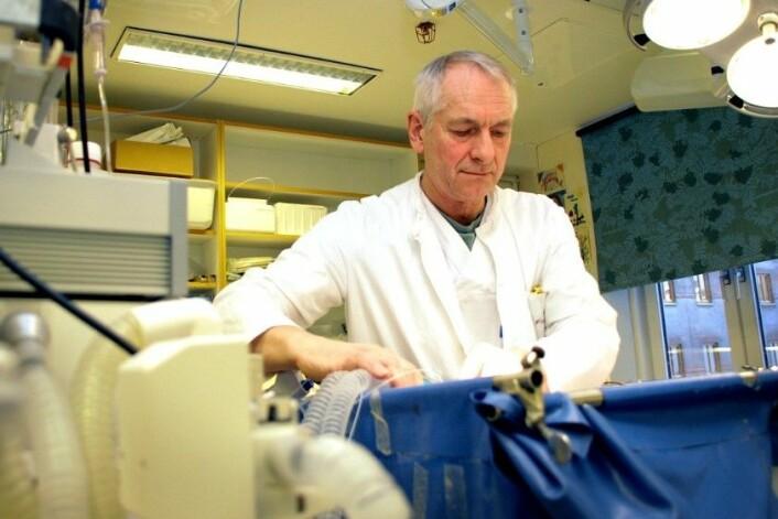 Torkjel Tveita, overlege ved Universitetssykehuset Nord-Norge og professor i klinisk medisin ved Universitetet i Tromsø–Norges arktiske universitet, leder et større hypotermiforsøk på gris. Her sjekker han temperaturen på et av dyrene. (Foto: Petter Strøm, NRK)