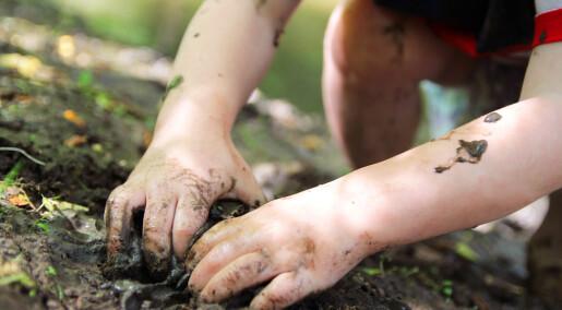 Forskere la skogbunn i barnehager. Det endret barnas immunsystem.