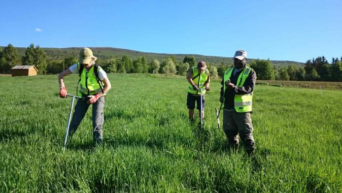 Jordkartleggere fra NIBIO på befaring i Lesja for å undersøke jorda i utvalgt grasmark .