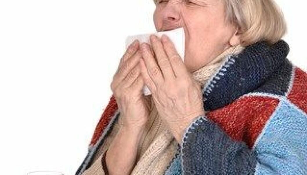 Små partikler kan påvirke hjerte og lunger hos eldre mennesker, og derfor kan et filter installert i soverommet hjelpe på helsen i forurensede hjem. Det viser et nytt dansk ph.d.-prosjekt. Gabriela Karotkki, KU