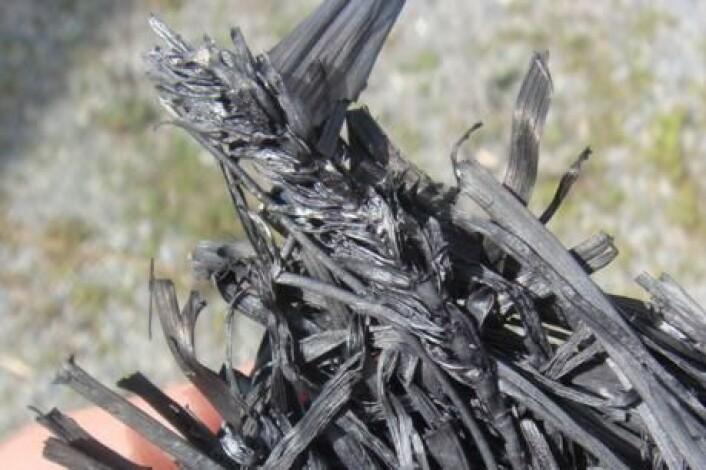 Biokull er et trekull-lignende materiale som blant annet egner seg godt til karbonbinding i jord. Nye forsøk viser at det også kan redusere planters opptak av tungmetaller. (Foto: Bioforsk)