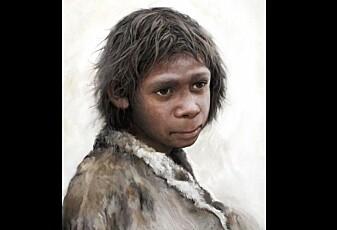 Neandertaler-barns melketenner forteller om deres første år