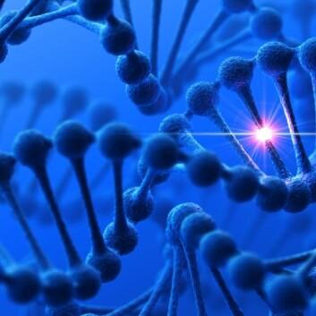 Ett gen, en egenskap. Den tanken er i ferd med å bli helt utdatert, etter hvert som vi ser hvordan arvematerialet vårt påvirker seg selv på utallige forskjellige måter. (Foto: (Bilde: Istockphoto))