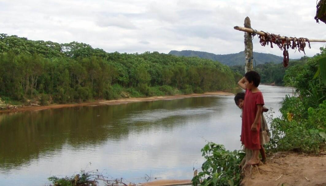 Forskere har studert helse blant Tsimane-folkegruppen i Amazonas i Bolivia.