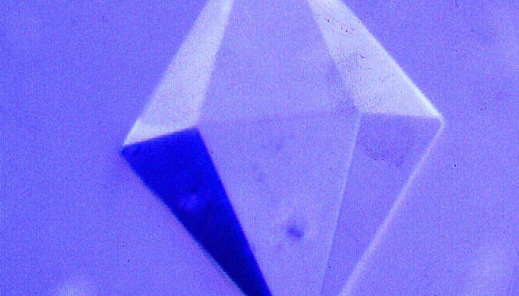Denne vakre krystallen kommer opprinnelig fra et protein i laks. I krystallisert form kan proteiner gi uvurderlige bidrag til kreftforskning og vaksineutvikling. (Foto: NorStruct)