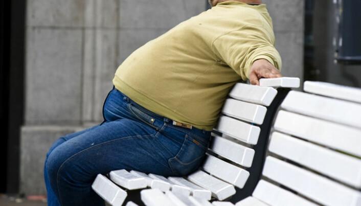 Fire bakterier i tarmene dine kan avsløre om du blir overvektig