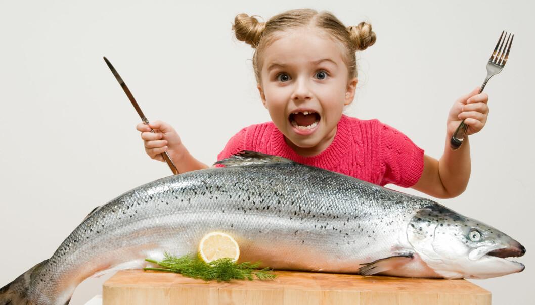 Det er sunt å spise fisk, får du nok ofte høre. Nå har forskere prøvd å finne ut om ikke plasten i havet gjør den usunn.