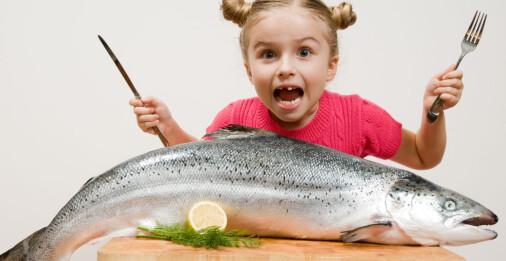 Er det farlig å spise fisk når det er så mye plast i havet?