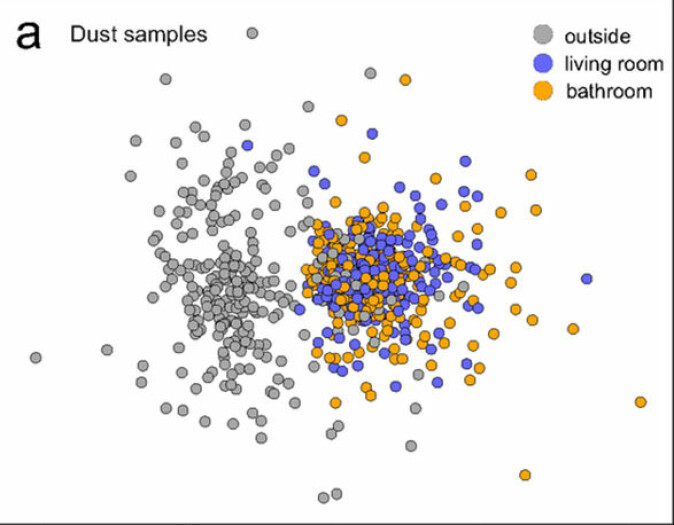 Figuren representerer alle støvprøvene, sortert etter likhet i to dimensjoner. Støvprøvene tatt utendørs er vist i grå farge, mens innendørsprøver fra stua er blå og de fra badet er oransje.