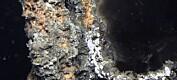 Tror på gruvedrift under vann