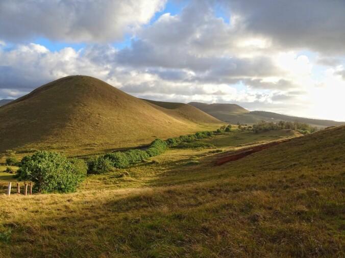 Et typisk landskap på Rapa Nui i dag: Avrundede, utdøde vulkaner dekket av lav vegetasjon.