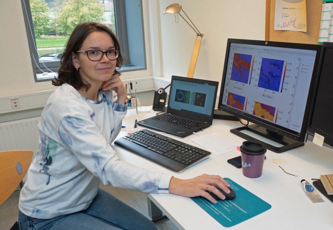 Valeria Tafintseva arbeider med å få mer informasjon ut av infrarøde, hyperspektrale bilder.