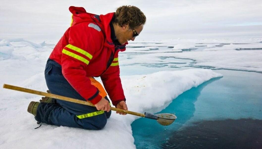 Forsker Phillipp Assmy samler inn plankton fra Polhavet.
