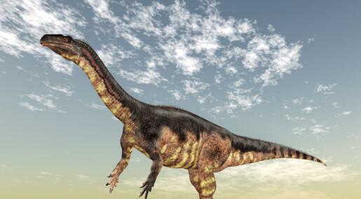 Forskere fant en ung dinosaur som lignet på foreldrene sine