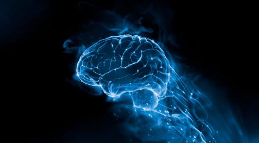 Slik overvaker hjernen si eiga mjølkesyre