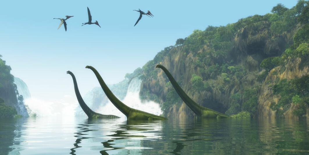 Andre fase av det såkalte B10K-prosjektet bekrefter forskernes forklaring fra sin første genomstudie om at gener forsvinner og blir tapt fra den felles stamformen som var felles med dinosaurene.