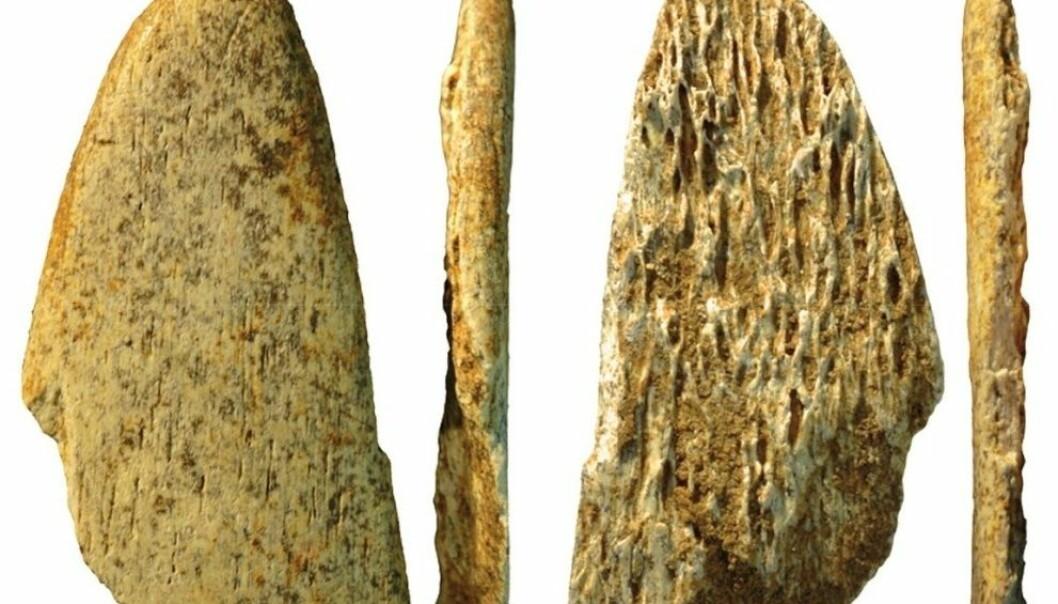 Forskerne har funnet det de mener er verktøy til å forbedre dyrehuder, laget av neandertalere. Det viser en avansert kultur, og mulig kunnskapsoverføring fra dem til Homo sapiens. Abri Peyrony & Pech-de-l'Azé I-prosjektene