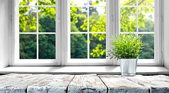 Har du et vindu ut mot det grønne? Det kan være en fordel under pandemien