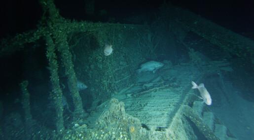 Hva slags fisk trives rundt en tysk ubåt fra andre verdenskrig?