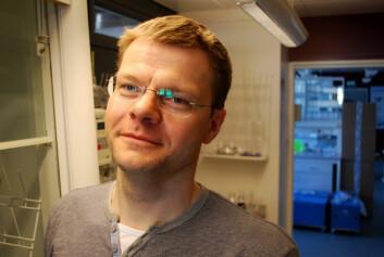 Torkjel M. Sandanger (Foto: Helge M. Markusson, Framsenteret)