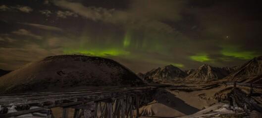 Se forskernes unike bilder fra Svalbard