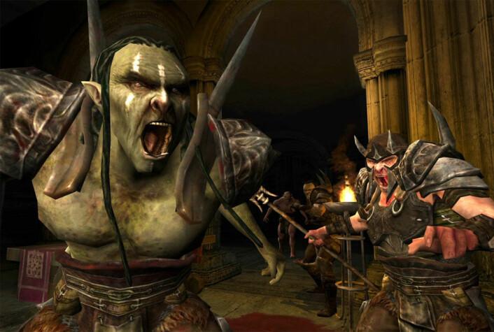 De svenske forskerne har blant annet undersøkt spillere i Lord Of The Rings Online. (Foto: (Grafikk: Lord Of The Rings Online))