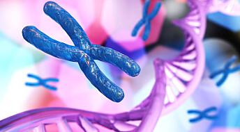 Forskere avviser at kromosomer ser slik ut