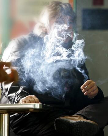 Hvis cellene våre blir stresset av ytre kjemiske faktorer, som for eksempel røyking, kan vi bli syke fordi genene våre endrer seg. Det viser ny dansk forskning. (Foto: Colourbox)