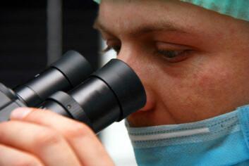Ved hjelp av en laser montert på et mikroskop kunne forskerne snitte i de umodne eggene og ta ut genmateriale som forteller om eventuelle feil og mangler i eggets modningsprosess. (Foto: Colourbox)