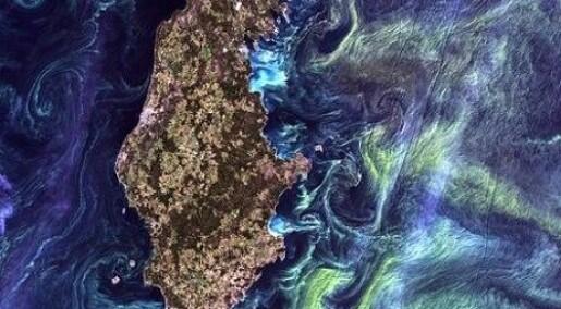 Jorda som et kunstverk