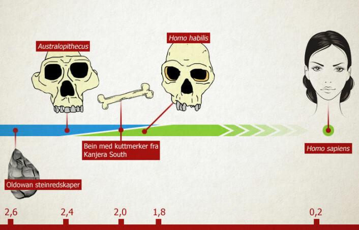 Tidlige spor av slakting er dyr er funnet i Kanjeras South i Kenya. De tidlige jegerne kan ha vært Homo habilis eller tilhørt den mer apelignende slekten Australopithecus. Tidslinjen viser millioner år. (Foto: (Illustrasjon: Per Byhring/forskning.no))