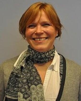 Tone Hellesund er professor i kulturvitenskap ved Universitetet i Bergen.