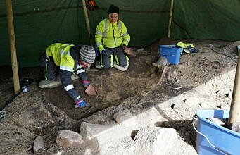 Special Viking grave with beads and brooches found in Central Norway