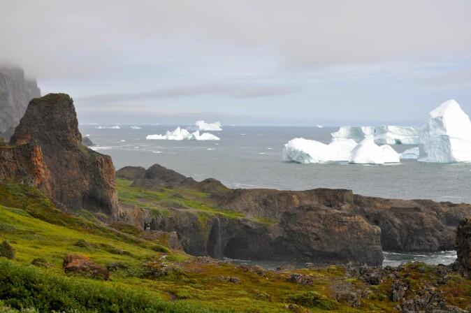 Fra Ilulissat (Jakobshavn) vest på Grønland og fjorden.