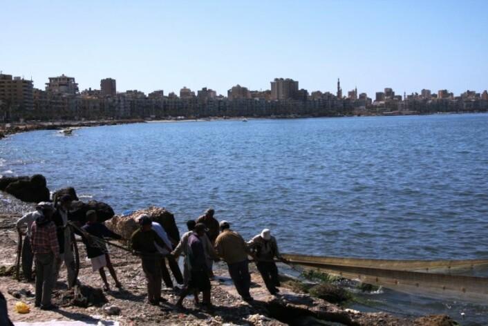 Fiskere i byen Alexandria som ligger på vestsiden av Nilens delta (Foto: Kristin Straumsheim Grønli)