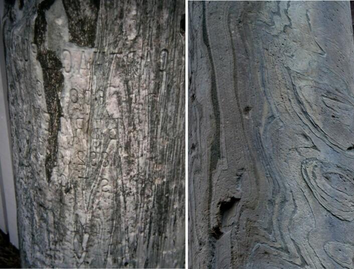 Marmor Carystium - en søyle fra gamle Bergen og en fra Forum i Roma. (Foto: NGU)