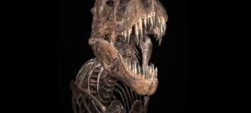 T-rex vokste kjemperaskt i ungdommen