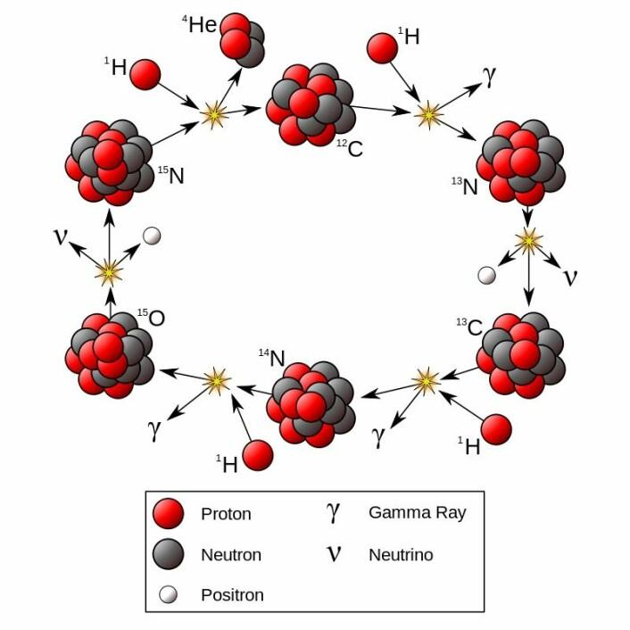 Hele CNO-syklusen, den varianten som sannsynligvis skjer inn i solen. Dette er kompliserte saker.