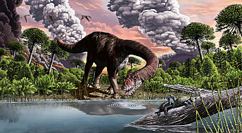 Derfor fikk noen dinosaurer så lange halser