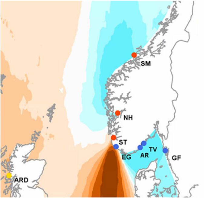 Dei blå områda på kartet viser utbreiinga av grøngylt langs kysten av Noreg. Bokstavane angir der prøveeksemplara av arten er henta opp. Det brune feltet angir grensa mellom dei to bestandane. Kvifor dette området er så smalt er usikkert. Men det er mykje sandbotn og strender ved kysten av Jæren, der denne fisken ikkje trivst.