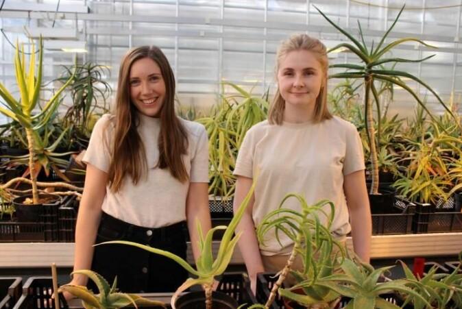 Karianne Uttgaard (t.v.) og Martine H. Nyrud opplevde begge at afrikanske liljer i veksthusene i Botanisk hage ble viktige.