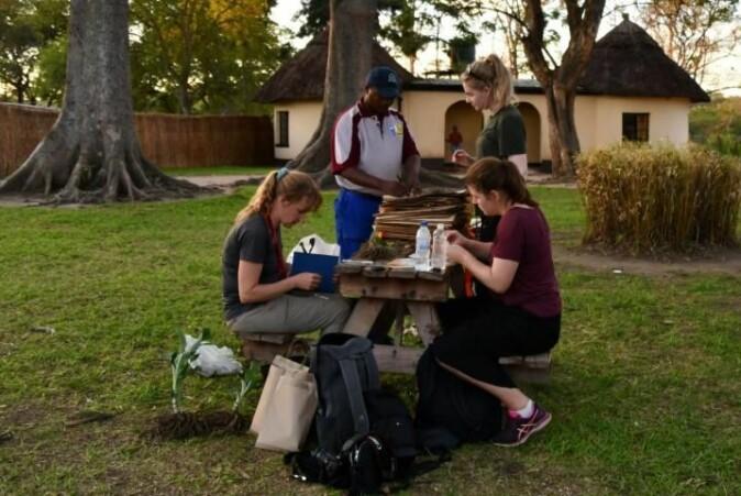 Her sorteres innsamlet materiale i Zimbabwe. Fra venstre: veileder Charlotte Sletten Bjorå, sjef for den botaniske hagen i Harare Christopher Chapano, Martine H. Nyrud og Malin Sævareid.