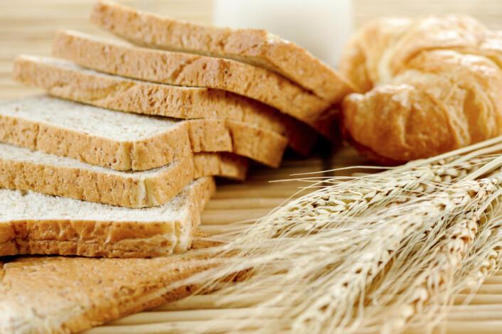 Frukt fra gress, som vi kaller korn, blir malt til mel eller brukt til matolje. Foto: (Foto: Surakit Harntongkul / Food Factory)