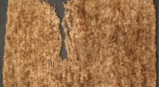 11 500 kalkunfjær gikk med for å lage dette teppet for 800 år siden