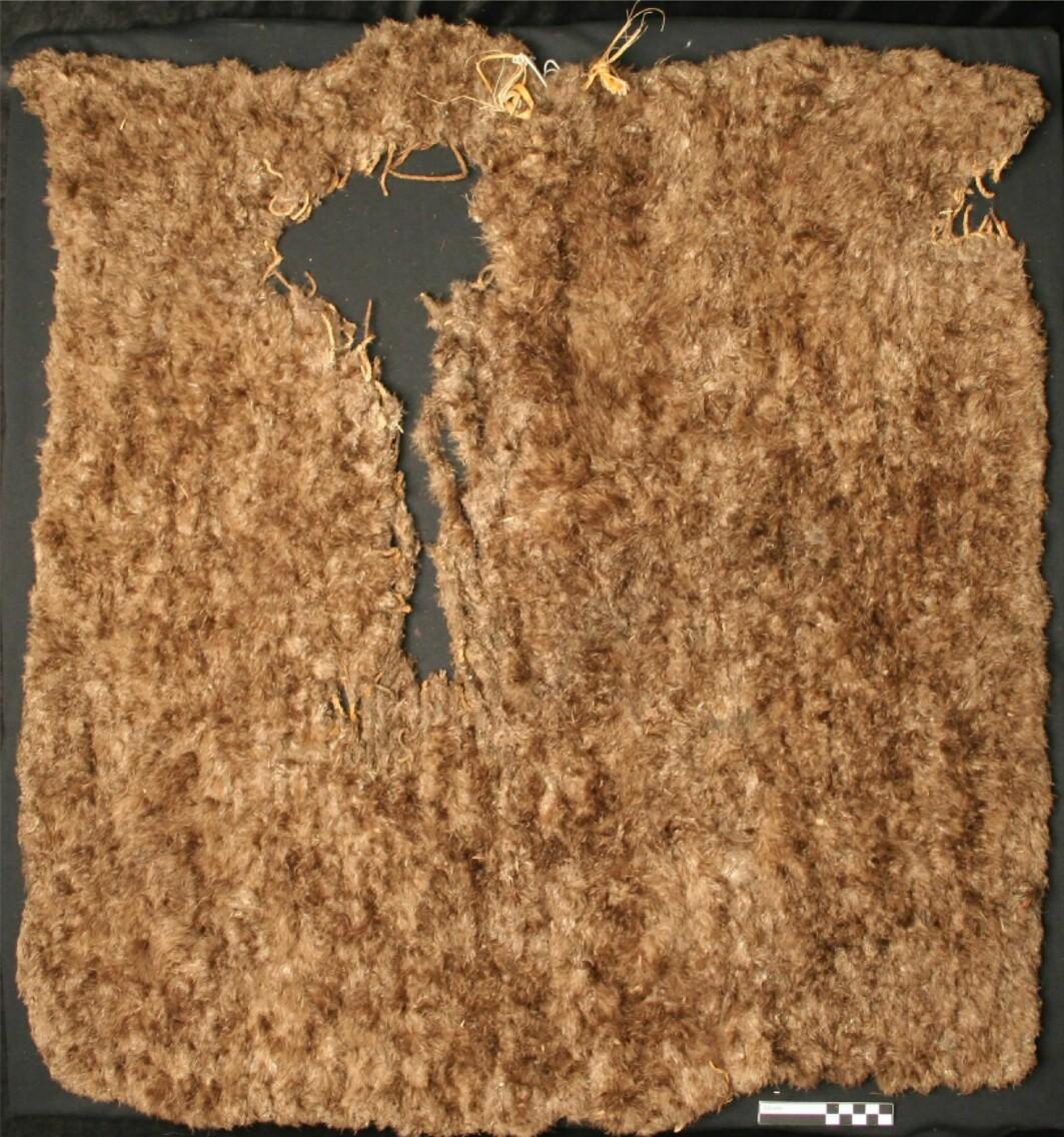 Det finnes svært få intakte fjærtepper, fra 1200-tallets Amerika. Her er et teppe som har tålt tidens tann på museum i Utah. Teppet er 99 x 108 centimeter og laget av kalkunfjær.